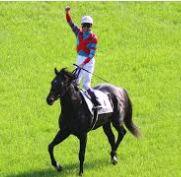 日本ダービーに関連する名馬|キズナ